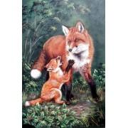 Fox & Kit